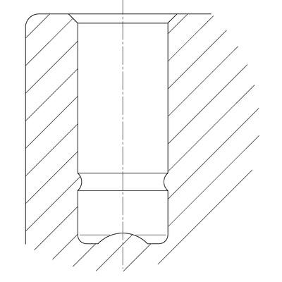 Roata pivotanta din poliamida 35x11mm - Schita 2