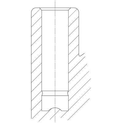 Rola pivotanta din poliamida 65x7mm - Schita 1